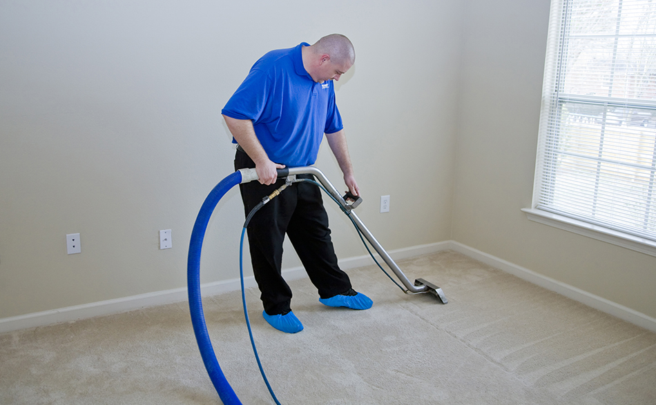 carpet cleaning, new york city carpet cleaning, nyc carpet cleaning, carpet cleaning services,carpet cleaning tendencies, tendencies of carpet cleaning in new york