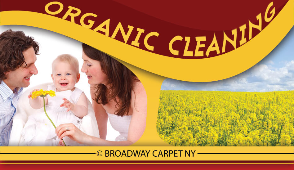 Organic Cleaning